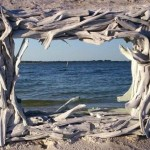 Driftwood Furniture and Accessories