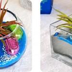 Decorative Sand and Plant