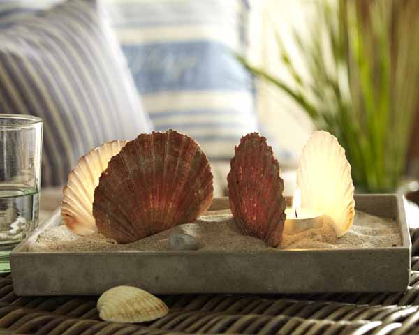 Seashell Candles in Sand Tray