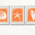 Orange Seashell Prints